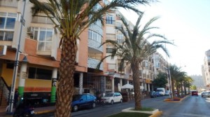 Avenida Habaneras tanie studio w Torrevieja